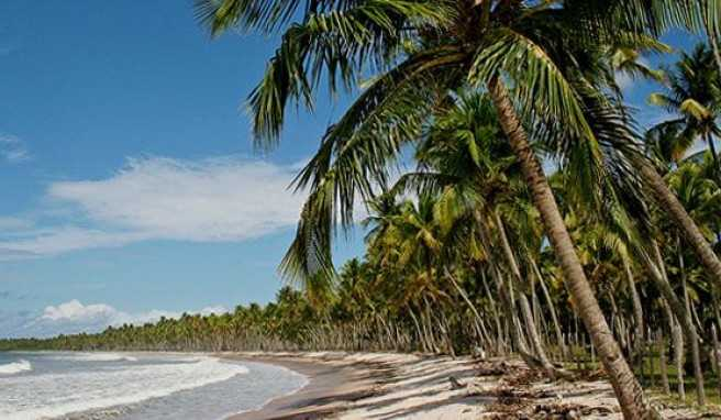 Salvador da Bahia in Brasilien mit Dünen, Strände und Palmen ohne Ende
