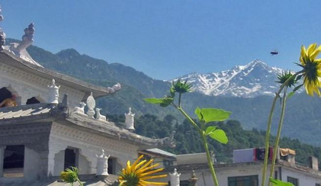 Dharamsala zu Füßen des Vor-Himalaja am Dach der Welt