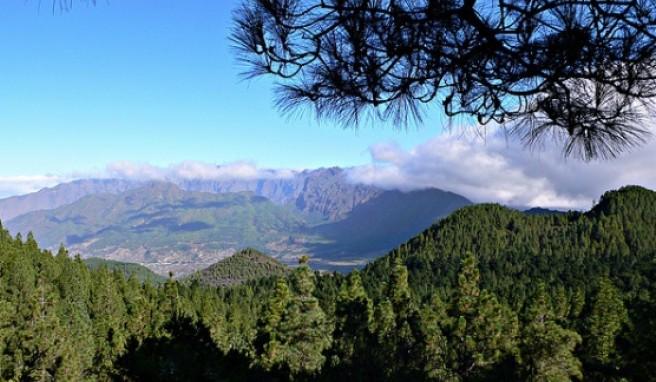 La Palma ist vulkanischen Ursprungs, die höchste Erhebung ist der Roque de la Muchachos.