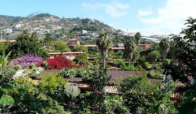 Madeira, Portugals grüne Blumeninsel