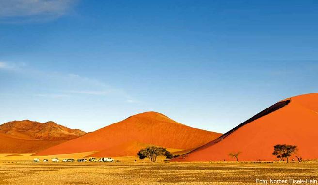 Wie Ameisen auf einem gigantischen Sandhaufen: Wanderer steigen auf die »Düne 45« im Namib-Naukluft-Park