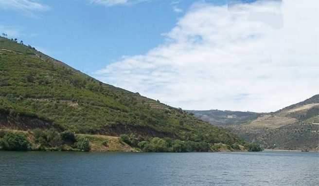 Die Weinhänge am Douro, wo der Portwein herkommt, Portugal