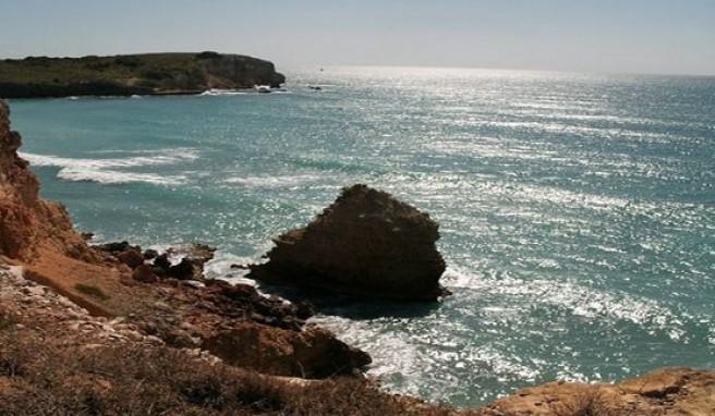 Puerto Ricos Steilküsten, Strandparadiese und Regenwald