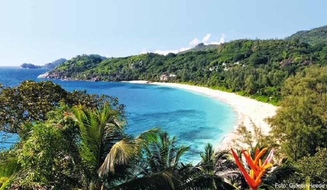 Wahrhaft paradiesisch: Blick auf die Anse Intendance auf der Hauptinsel Mahé