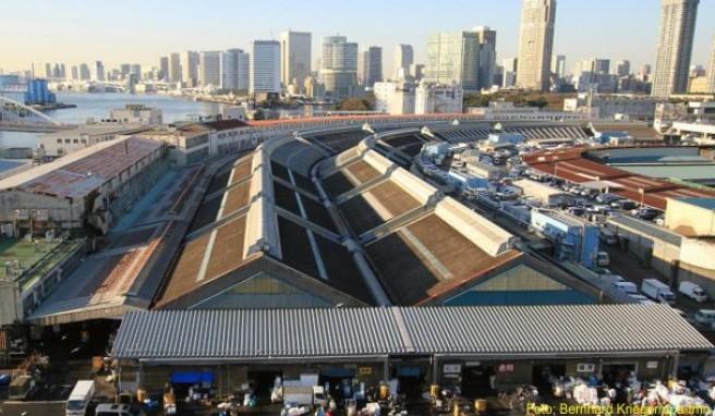 Über eine Größe von mehr als 40 Fußballfeldern erstreckt sich der Fischmarkt Tsukiji in Tokio.