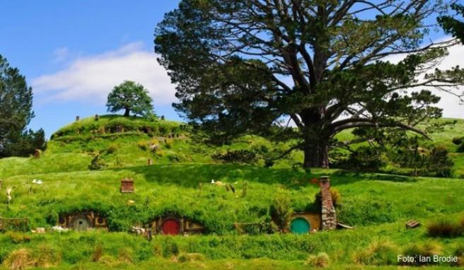 Das Dorf Hobbingen: Neuseeland diente als Kulisse für die Verfilmung der »Herr der Ringe«-Trilogie. Dieser Umstand dürfte zum Touristenboom im Land beigetragen haben