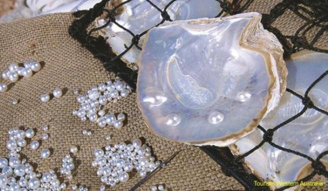 Die Perlen haben die Stadt Broome weltbekannt gemacht. Heute kommen sie vorwiegend aus Zuchtfarmen.