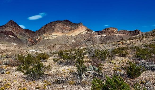 Der Big Bend National Park bietet Wüsten, Berge und eine reiche Tierwelt. Er wird vom Rio Grande begrenzt