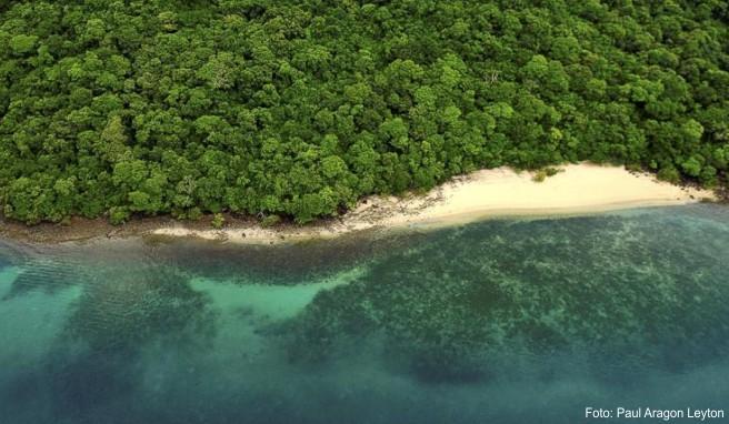 Tückisches Paradies: Das Meer birgt auch für erfahrene Schwimmer große Gefahren
