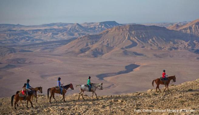 Bisher reisen etwa 5 Prozent aller Touristen, die Israel besuchen, auch in die Wüste Negev
