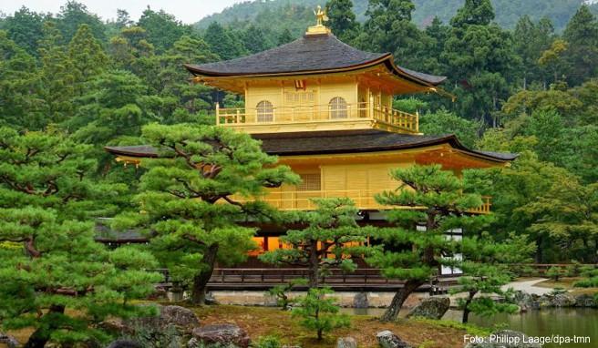 Der goldene Tempel Kinkaku-ji in Kyoto ist eine Sehenswürdigkeit der geschichtsträchtigen Stadt - Japan als Studienreiseziel ist im Trend.