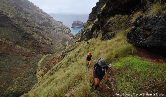 Wer auf St. Helena in der Natur wandern geht, erlebt wohltuende Einsamkeit