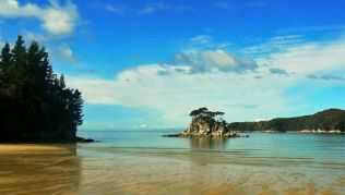 Torrent Bay im Abel Tasman Nationalpark in Neuseeland