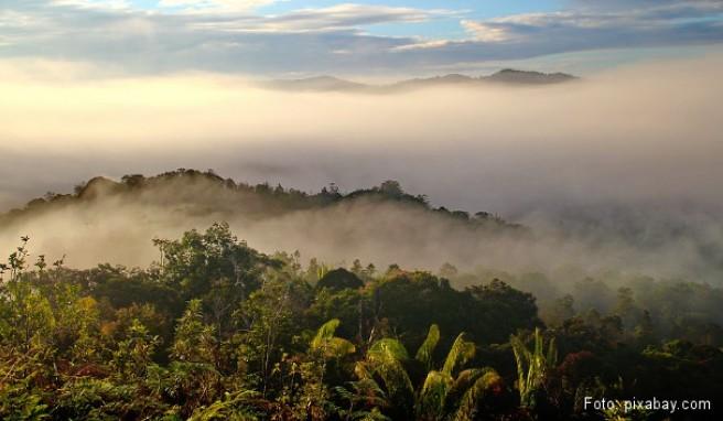 Klima Borneo
