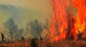 Kampf gegen die Flammen: In mehreren südeuropäischen Ländern haben die Feuerwehrleute mit Waldbränden zu tun.