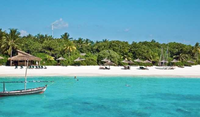 Maldives Reethi Beach Resort Reviews